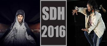 SDH 2016